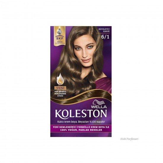 Koleston Kit Set Saç Boyası 6/1 Büyüleyici Kahve